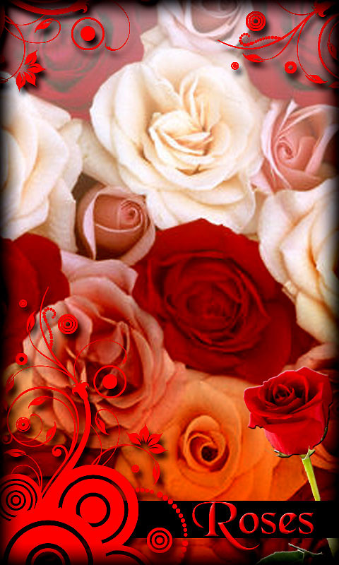 Roses Live Wallpaper Free Android Live Wallpaper Download Appraw