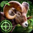 Wild Hunter 3D Icon
