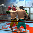 boxing action fighting game Icon