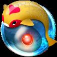 Zen Koi Icon