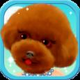 Puppy Dog Dress Up Icon