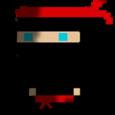 Bouncy Ninja Icon