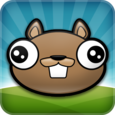 Noogra Nuts - The Squirrel Icon