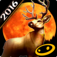 DEER HUNTER 2016 Icon