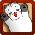 My Lovely Cat Icon