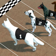 Crazy Dog Racing Icon