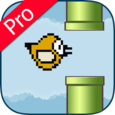 Happy Bird Pro Icon