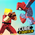 Cube Fighter 3D Icon