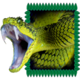 Exotic Snake Icon