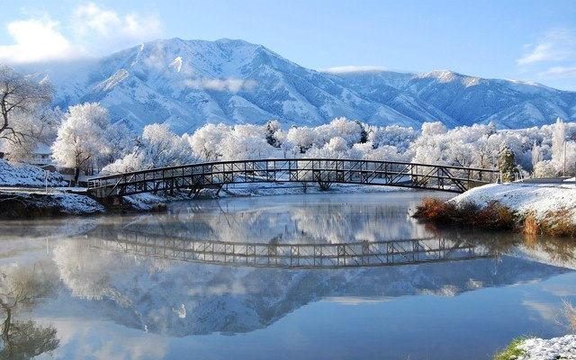 Bridge Winter