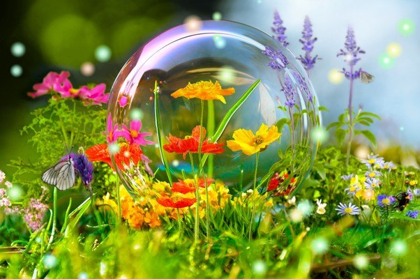 Flower Bubble
