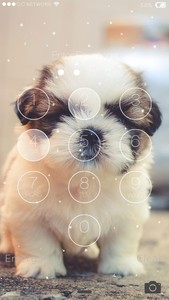 Cute Puppy Lock Screen