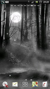 misty forest at night LWP