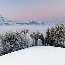 Winter Above The Fog