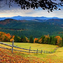 Wonderful Autumn View