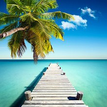 Tropical Jetty