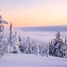 Russia Snow