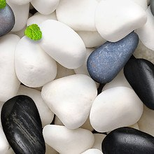 Pebbles (LG Optimus)