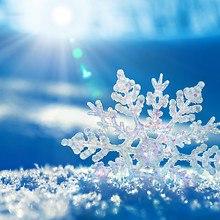 Beautiful Snowflake