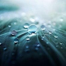 Crystal Dew