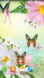 Butterflies Live Wallpaper