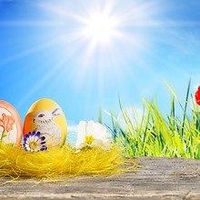 Easter Sunshine