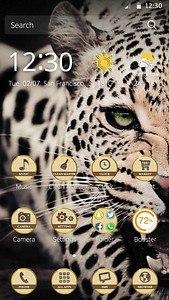 crazy leopard theme