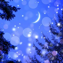 Winter Night Sparkle