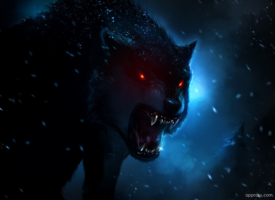 Dark Wolf Wallpaper download  Wolf HD Wallpaper  Appraw