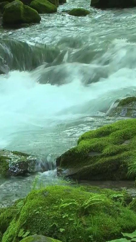 flowing river wallpaper - photo #21