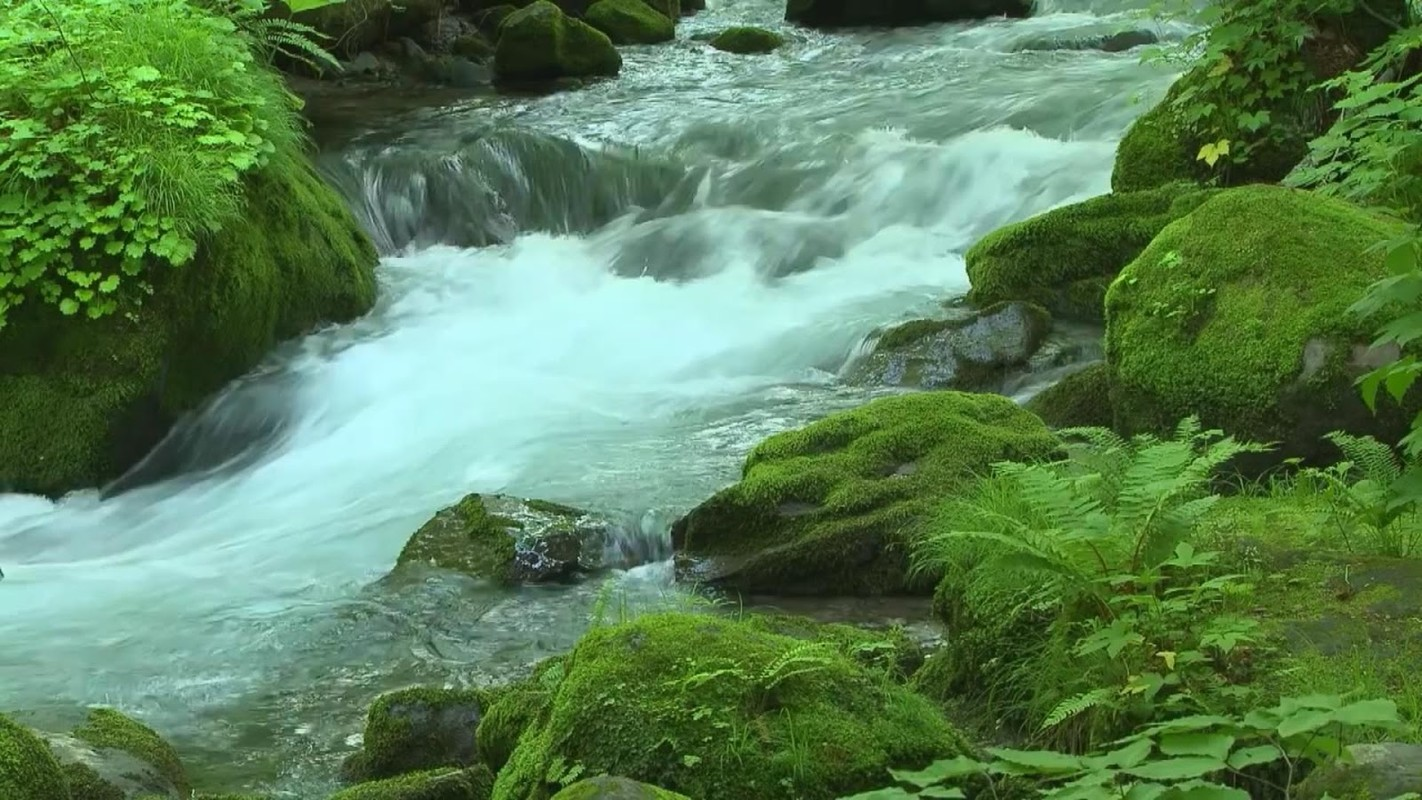 flowing river wallpaper -#main