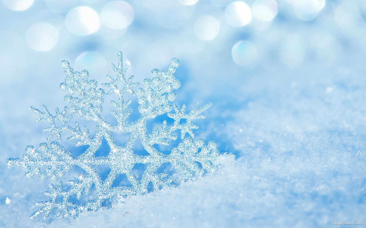 Beautiful Snowflake Wallpaper Download Snow Hd Wallpaper