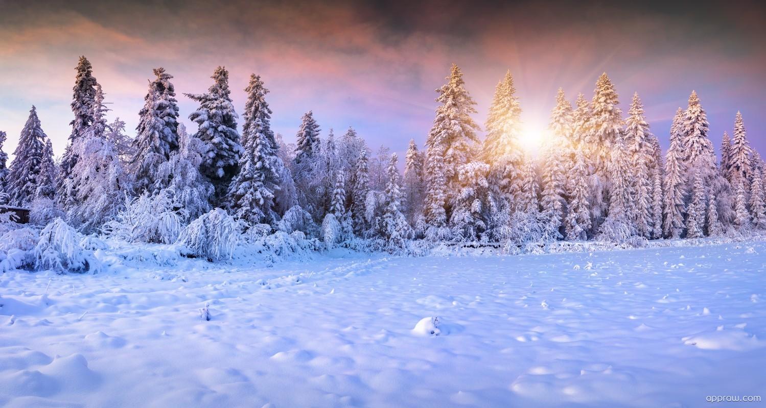 Winter Landscape Wallpaper Download Winter Hd Wallpaper