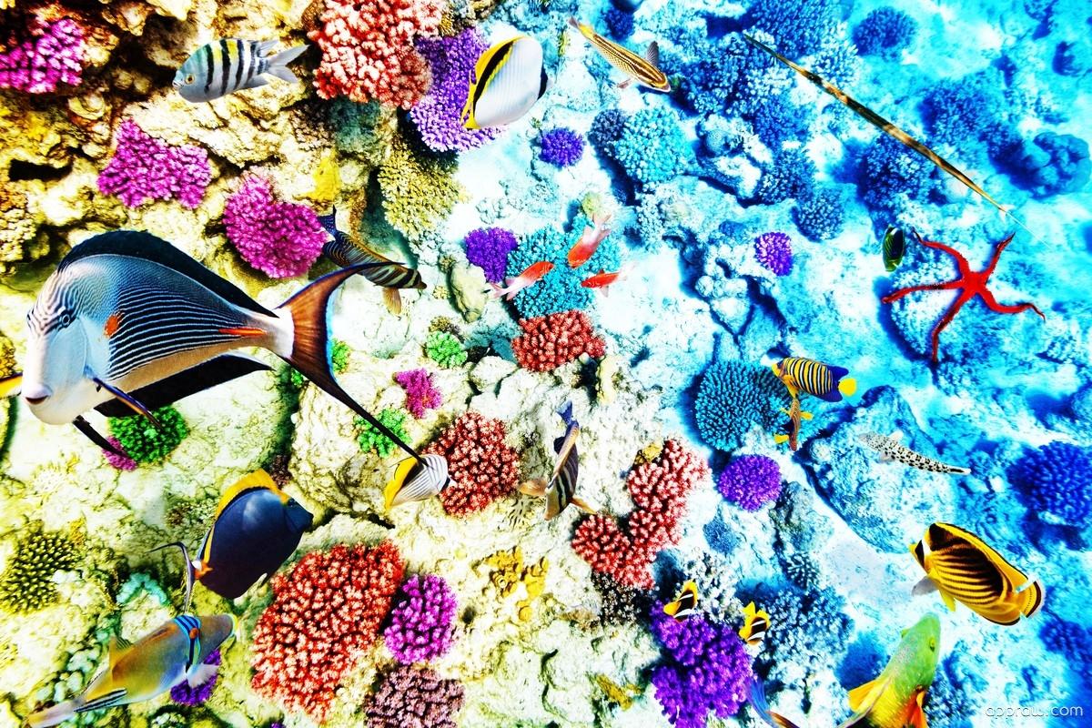 ocean live wallpaper apk