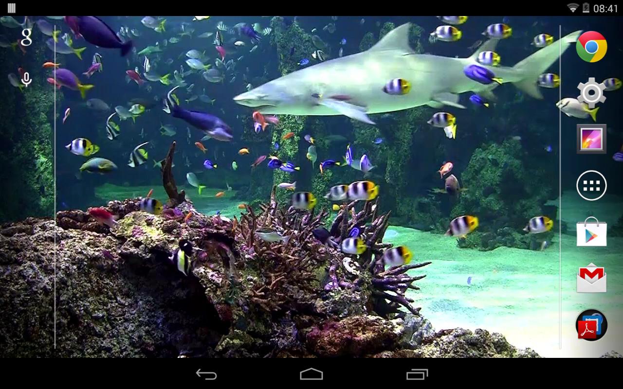 Aquarium live wallpaper free android live wallpaper for Wallpaper live home