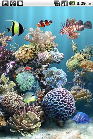 aniPet Aquarium Live Wallpaper Free Android Live Wallpaper ...