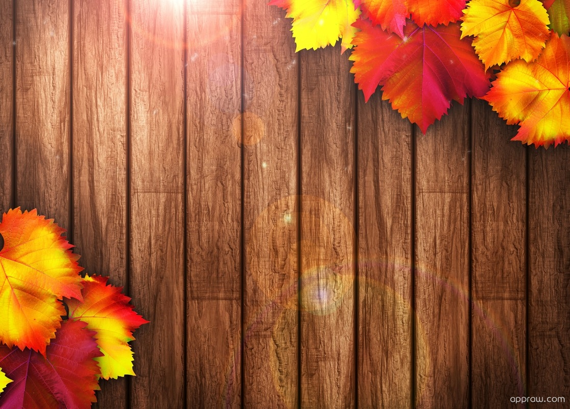 autumn wooden background wallpaper download   autumn hd