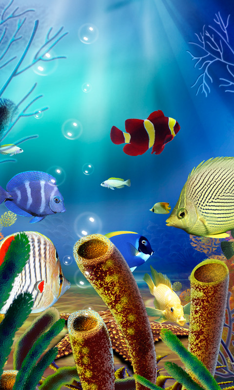 ... Aquarium Live Wallpaper (free) ...