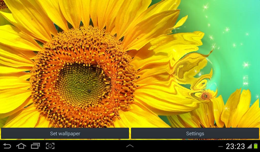 Flower Live Wallpaper Free Android Live Wallpaper Download