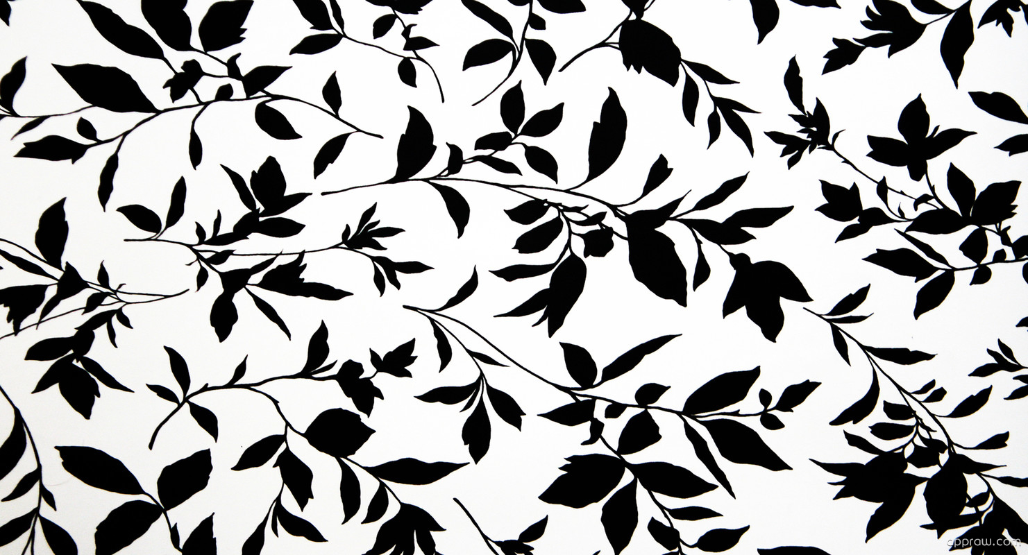 Black And White Leaves Wallpaper download - Leaf HD ...