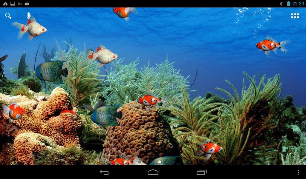 Aquarium live wallpaper free android live wallpaper for Wallpaper live home