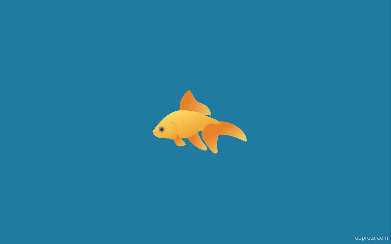 Simple fish wallpaper download minimalism hd wallpaper for 94 1 the fish