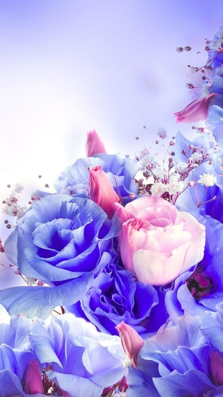 Flowers live wallpaper free android live wallpaper - Hd rose wallpaper for android mobile ...