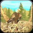 Wild Eagle Sim 3D Icon