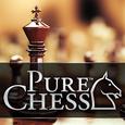 Pure Chess Free Icon