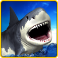 Angry Shark Simulator 3D Icon