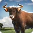 Bull Simulator 3D Icon