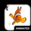 Clown Fish Animated Keyboard Icon