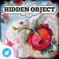 Hidden Object: Valentine's Day Icon
