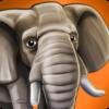 PetWorld: WildLife Africa Icon